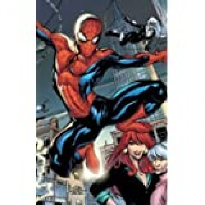 Marvel Knights Spider-Man Volume 1: Down Among The Dead Men TPB