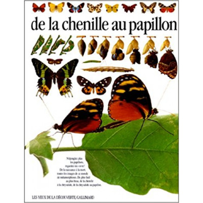 DE LA CHENILLE AU PAPILLON de PAUL WHALLEY